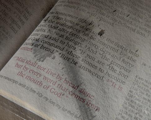 bible-ashes.jpg