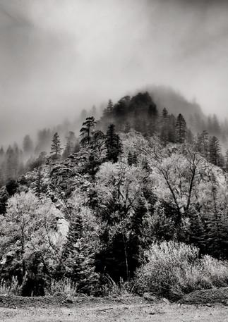 ©StanCranePhotogrphy.com--33.jpg