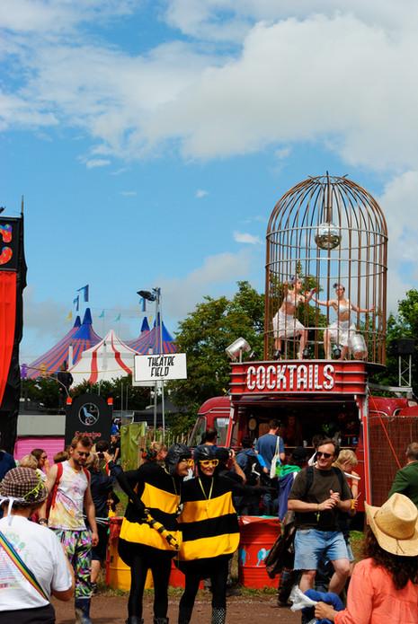 Cockatoo at Glastonbury Festival Circus Field