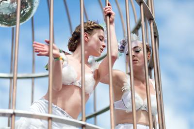 Ballet in the Bird Cage
