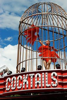 The Cockatoo Cage at Glastonbury