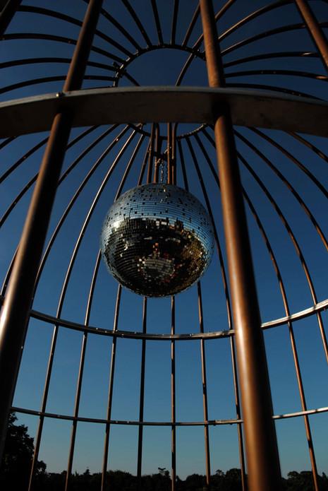The Cockatoo Bird Cage