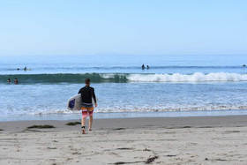 Life in the Surf