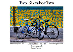 Two Bikes for Two