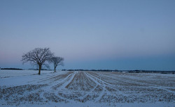 Dusk... Waterloo Region