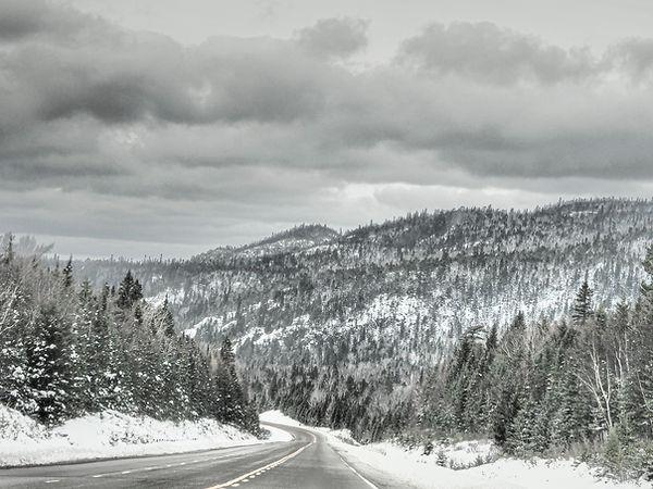 Highway 17.jpg