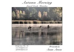 Autumn morning, Laurel Creek