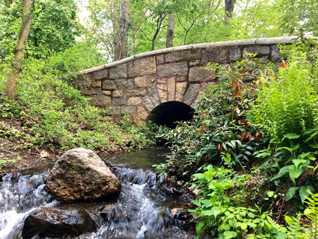 Boston's Emerald Necklace | A Day Away