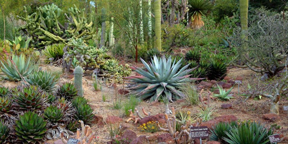 Past Event. Feb 17 Excursion to San Diego Botanic Gardens