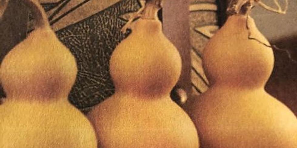 Orange County Gourd Society: Debbie Zimmerman talks Gourds.