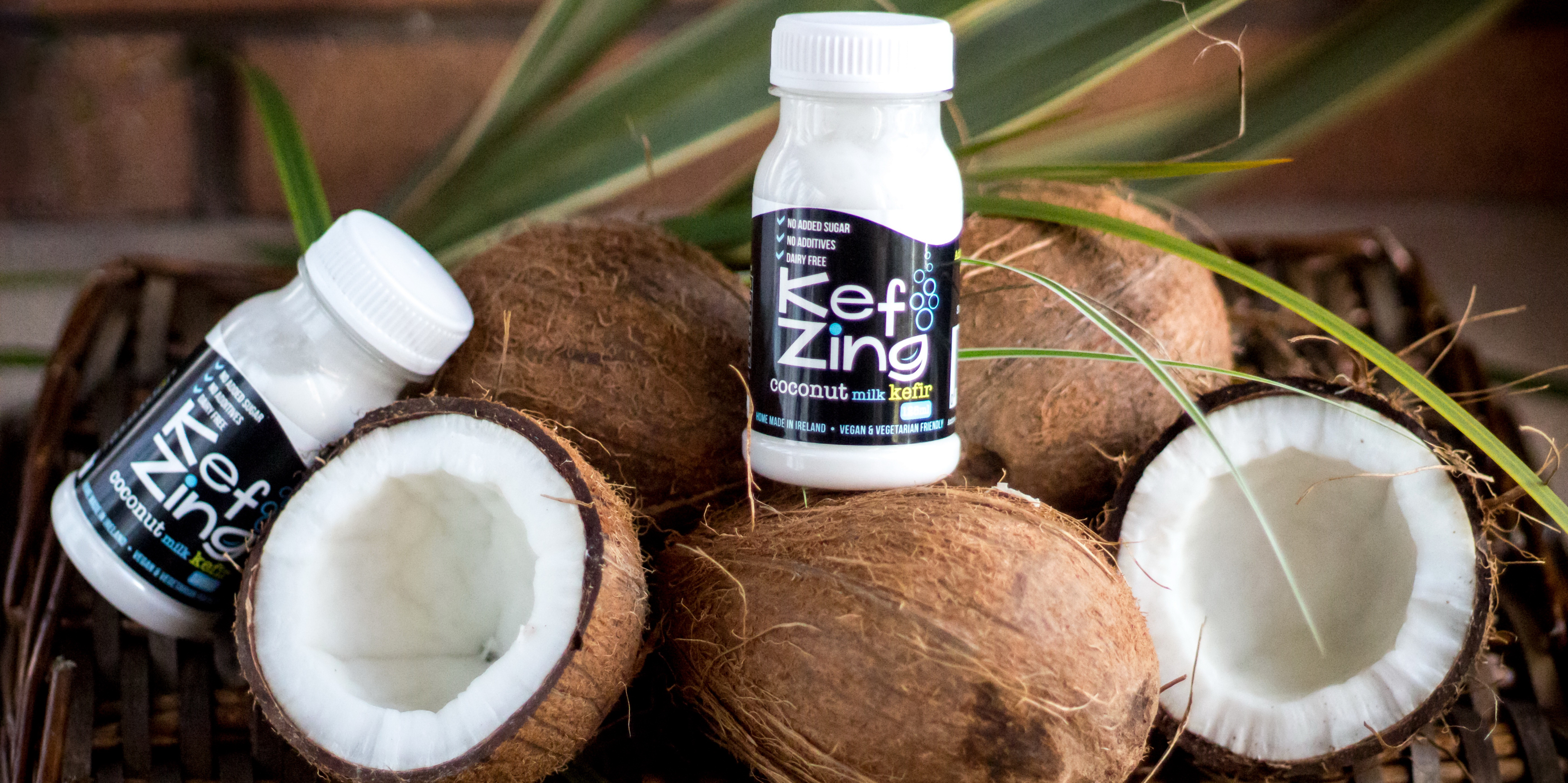 KEFZING COCONUTS COVER