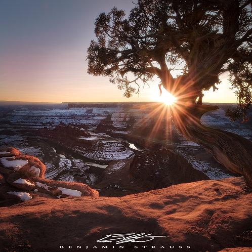 A Setting Desert Sun