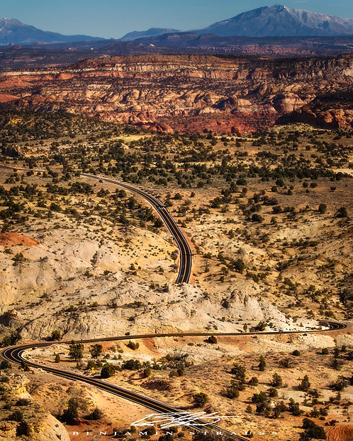 Desert Navigation