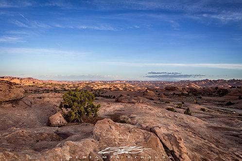 Blue Desert Skies