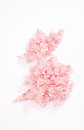 PACK OF OHC-01070-101 Snowflake Hydrangea - Pink