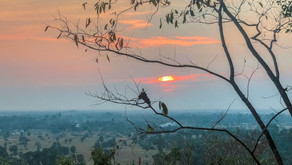 Comment visiter Siem Reap ?