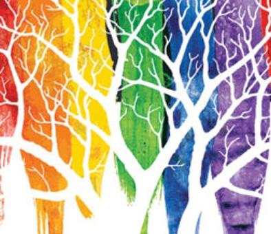 UPHOLDING THE CRIMINALISATION OF HOMOSEXUALITY
