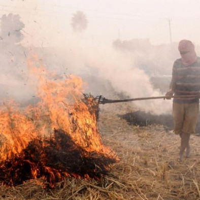PARALI, POLLUTION AND PUNISHMENT: POSITION OF INDIAN FARMERS IN THE LIGHT OF ARTICLE 14