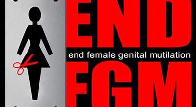 WILL CRIMINALISATION OF FEMALE GENITAL MUTILATION IN SUDAN BE ENOUGH FOR ERADICATING THE PRACTICE?