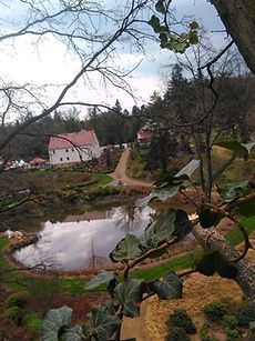 arboretum_wojsławice.jpg