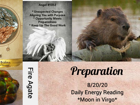 8/20/20  Daily Energy Reading-Preparation