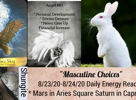 8/23/20-8/24/20  Daily Energy Reading - Masculine Choices