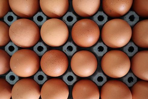 egg-5037827_960_720.jpg