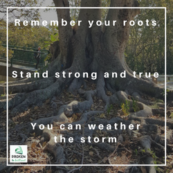 stong roots