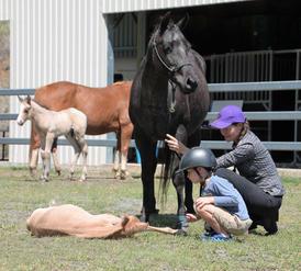 horseslinda-kids.jpg