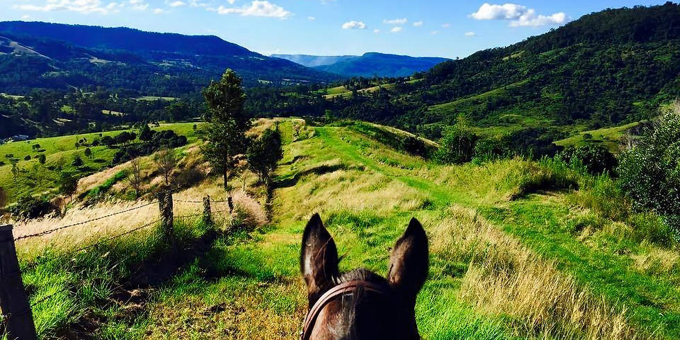 Gratitude Horse Ride postponed due to COVID19