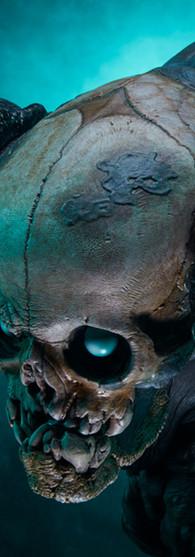 executus-reaper-oglavaeil_court-of-the-d
