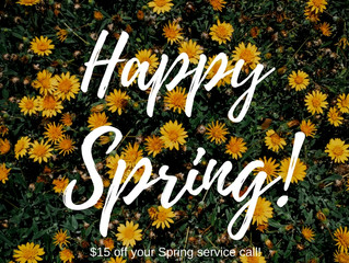 Save this Spring!