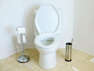"""""""Should I replace my toilet?"""""""
