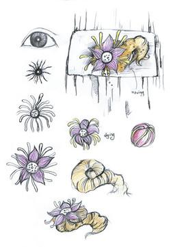The Design of Mountain's Eye