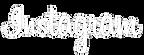 instagram-font-logo-white-png.png