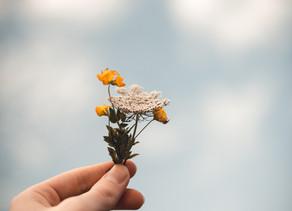 Dia 6: contando com amigos nos tempos difíceis