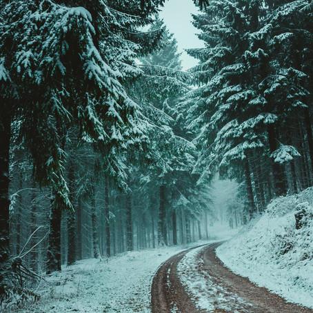 O Inverno do Coração