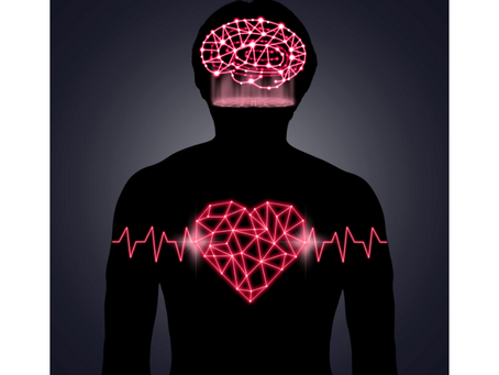 The Heart/Brain Connection