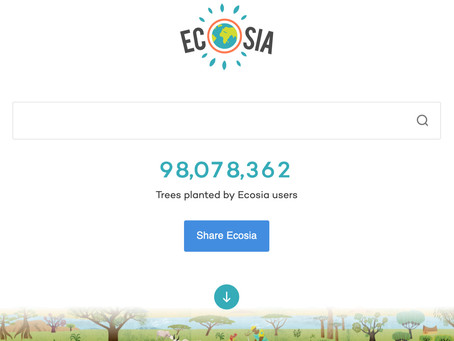 Ecosia: The Carbon Negative Search Engine!