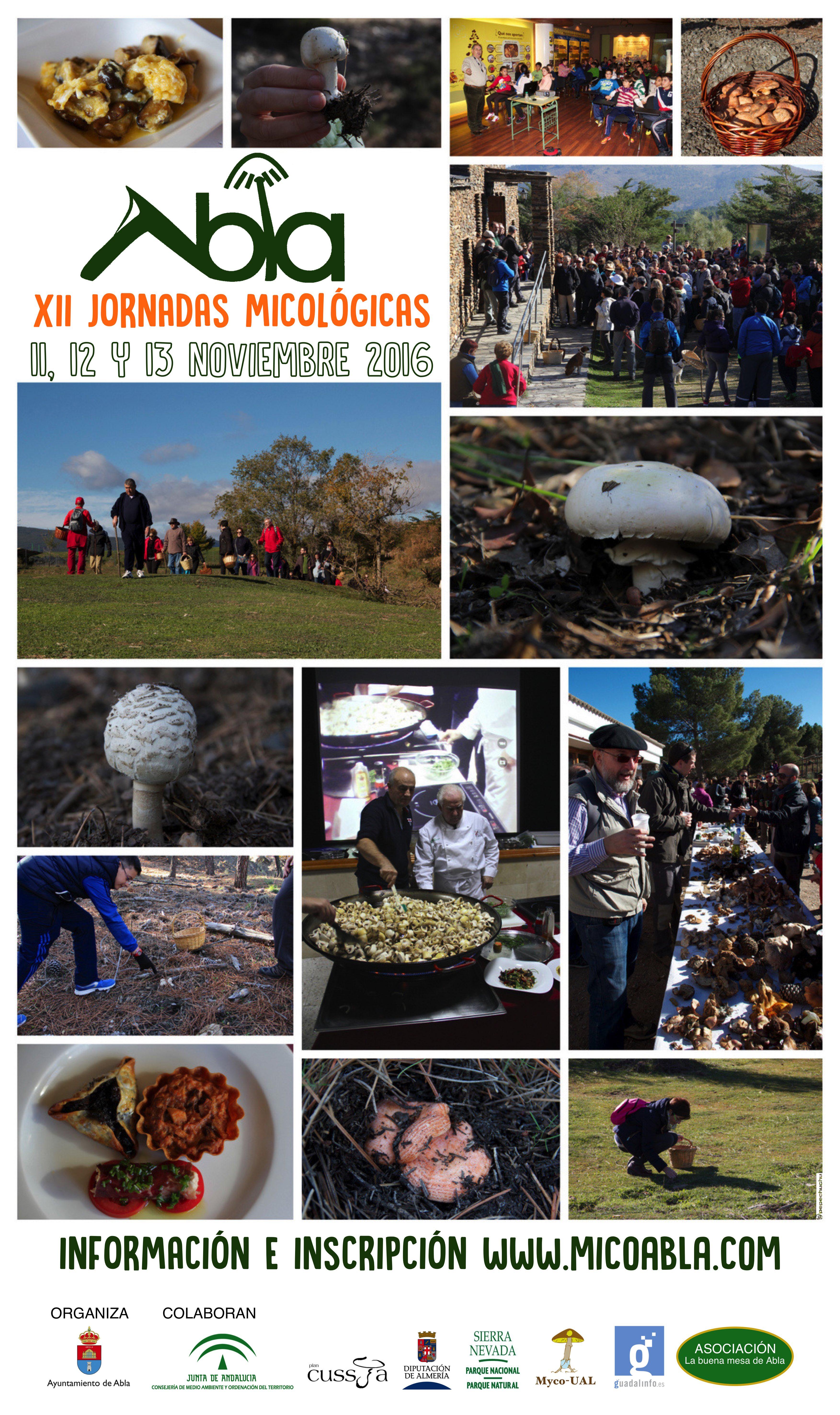 Cartel Jornadas Micologicas Abla 2016