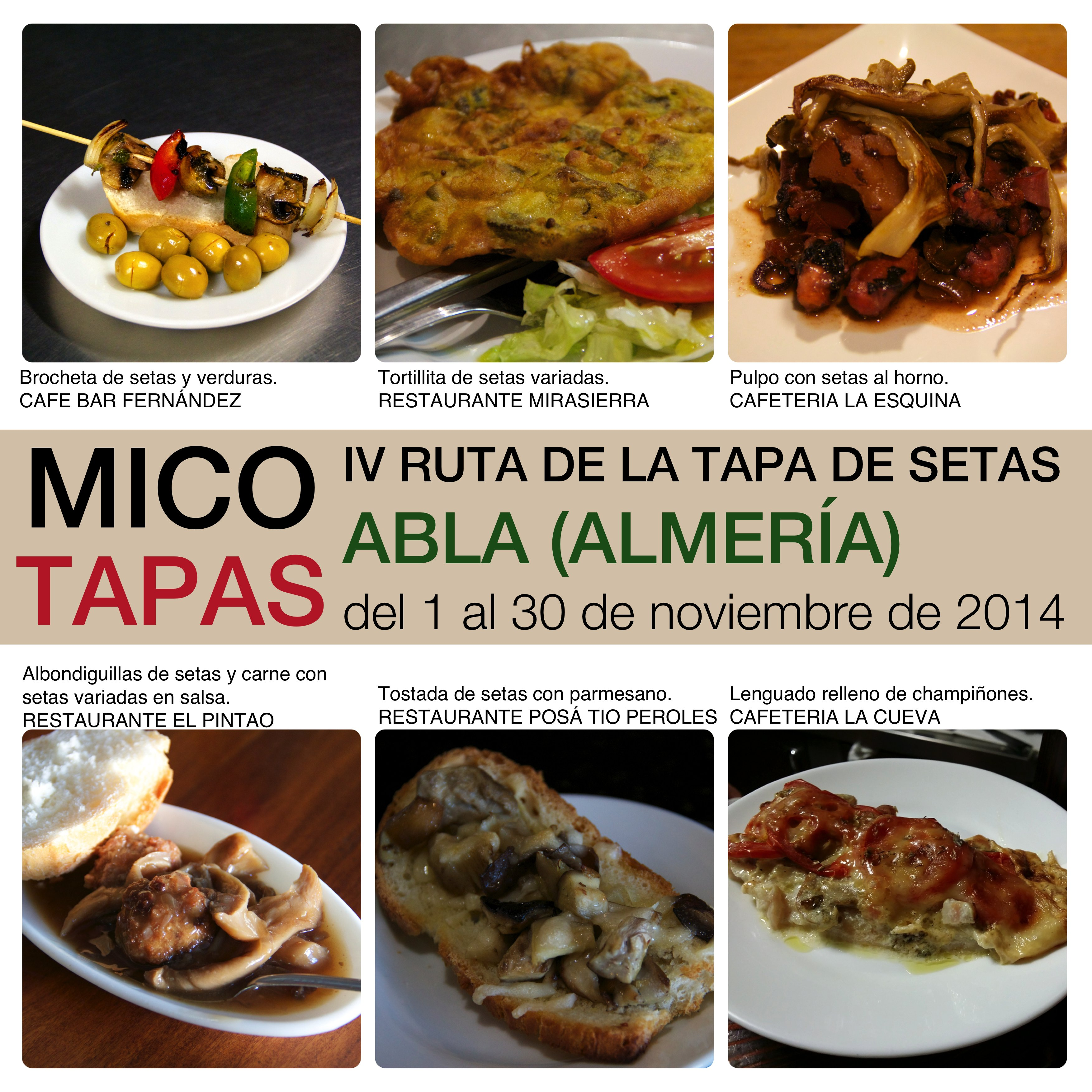 Tapas IV Ruta Micotapas web