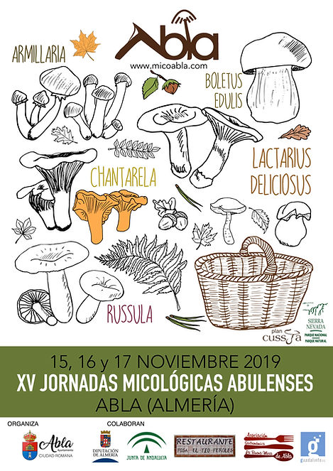 Jornadas micoabla 2019.jpg