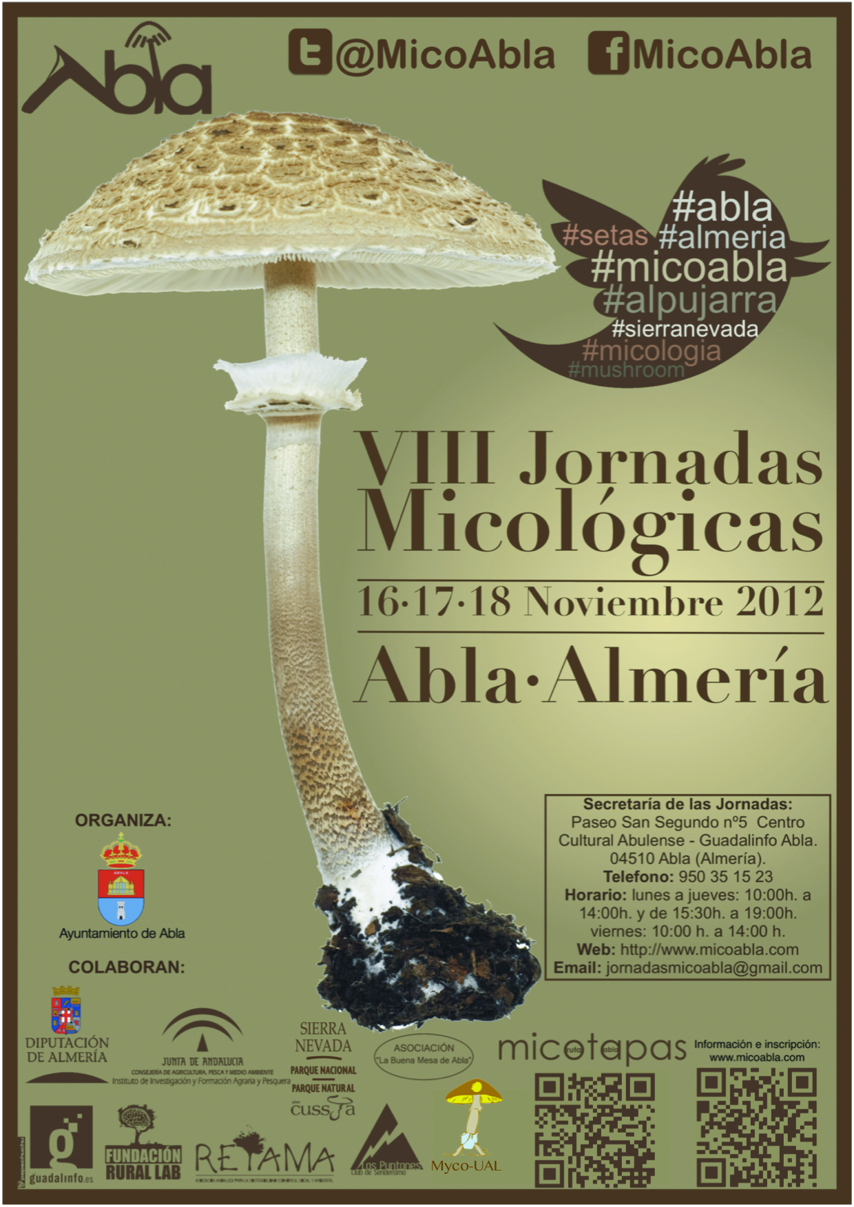 Cartel+MicoAbla2012web