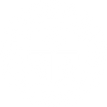 DMU Whhite Coin.png