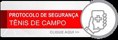 BOTAO TENIS DE CAMPO.png