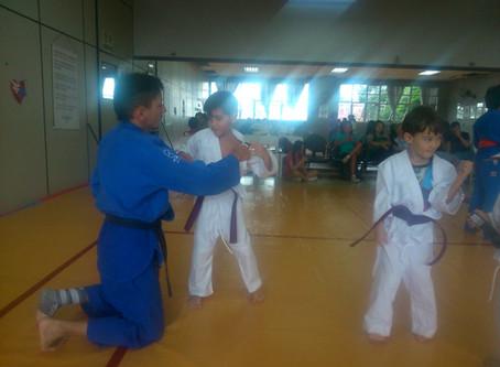 Pratique Artes Marciais no Nippon