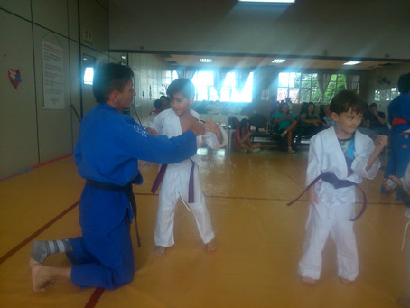 Pratique Artes Marciais no Nippon