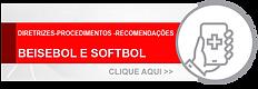 DIRETRIZES  BEISEBOL E SOFTBOL.png