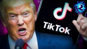 """Eurasia Daily: """"Эксперт: Обвинения США в адрес TikTok напоминают «охоту на ведьм»"""""""