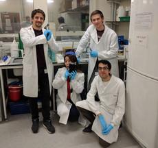 Having a little bit of fun in the lab